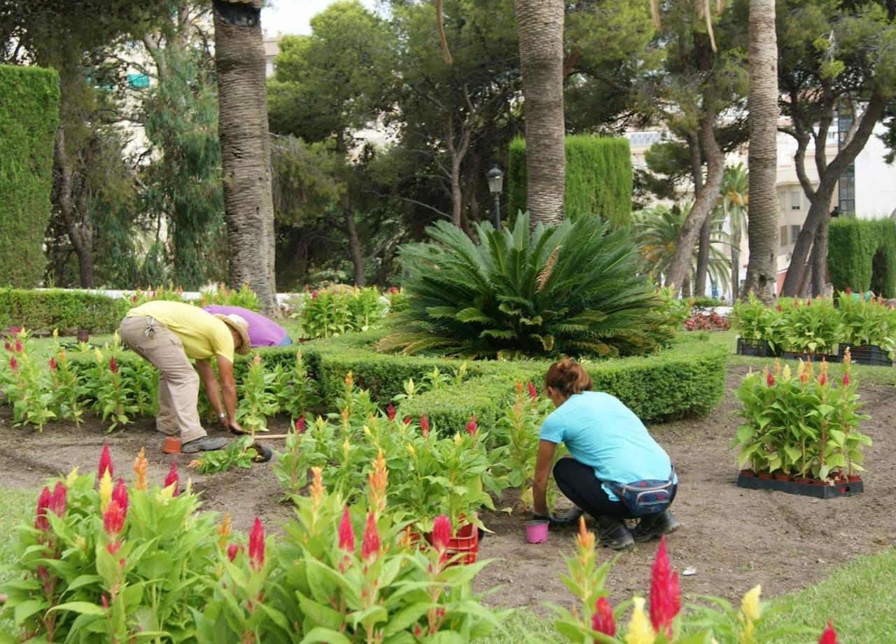 Las concejal as de mantenimiento y parques y jardines for Parques y jardines